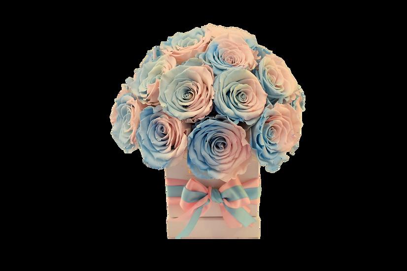 Mini Deluxe Preserved Roses (Reveal Gender)