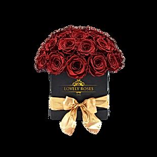 Preserved Roses | Lovely Roses | United States
