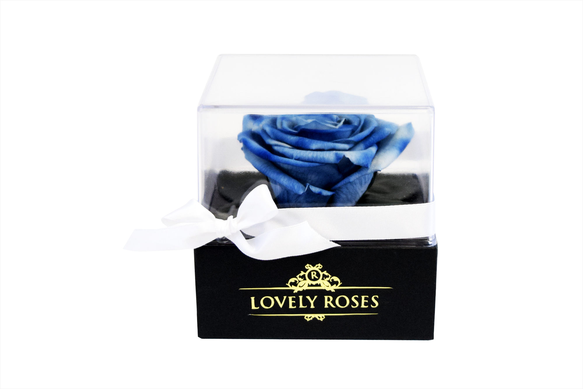ONE LOVE SCENTED BLUE