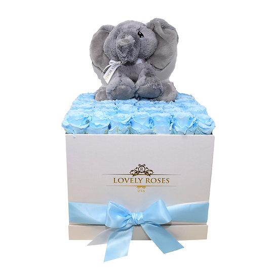 Elephant Baby Blue Preserved Roses