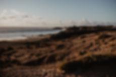 surf blog (3).jpg