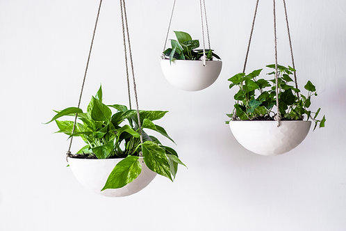 Classic Revisions Hanging Planter