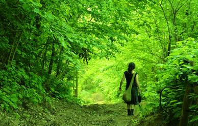 Forest Child - 2018