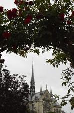 Notre Dame - 2018