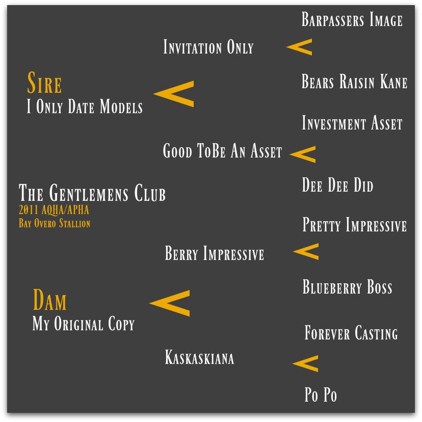 The Gentlemens Club Pedigree Gray.jpg