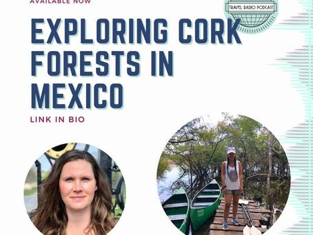 Exploring Cork Forests in Solferino, Mexico