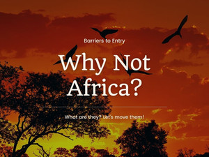 Barriers To Entry - Africa Must Be Experienced