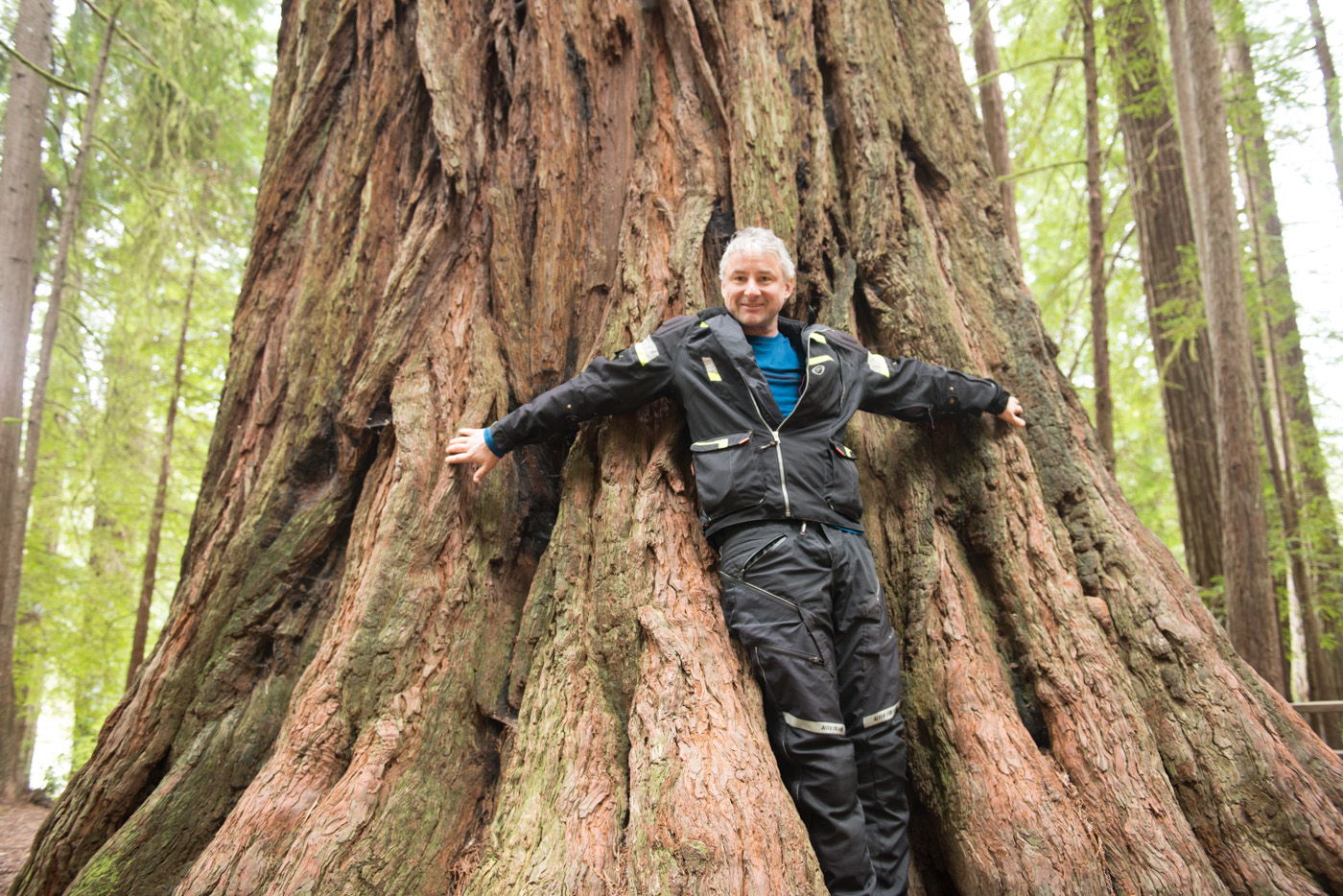 Mike Keefer and a giant redwood