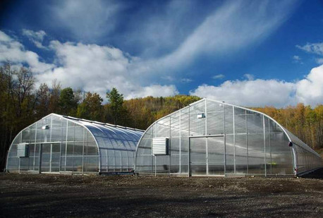 Twin Sisters Native Plant Nursery Development