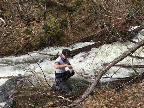 Surface and Ground Water Sampling