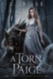 A Torn Paige Ebook Cover.jpg