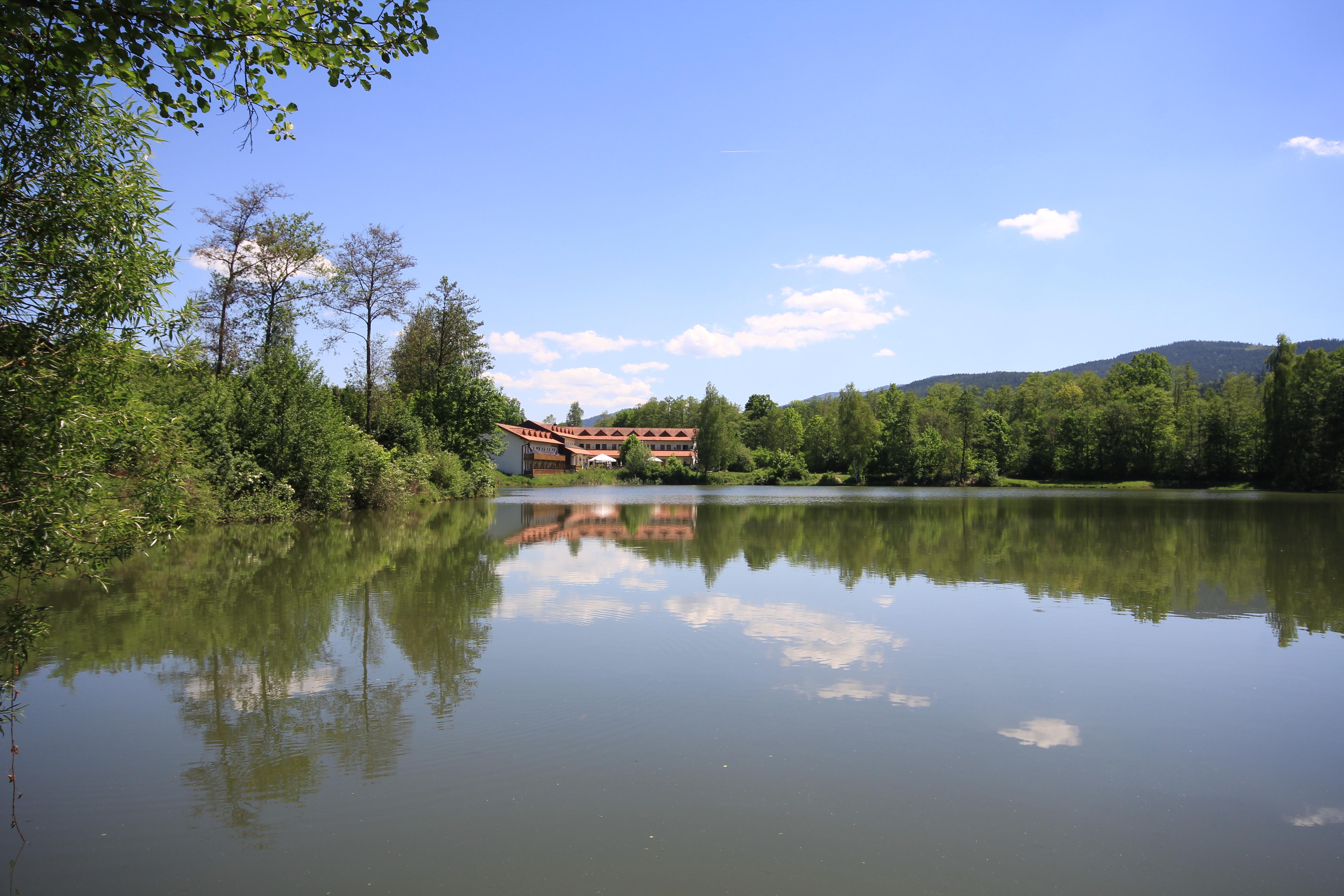 glitzernder See