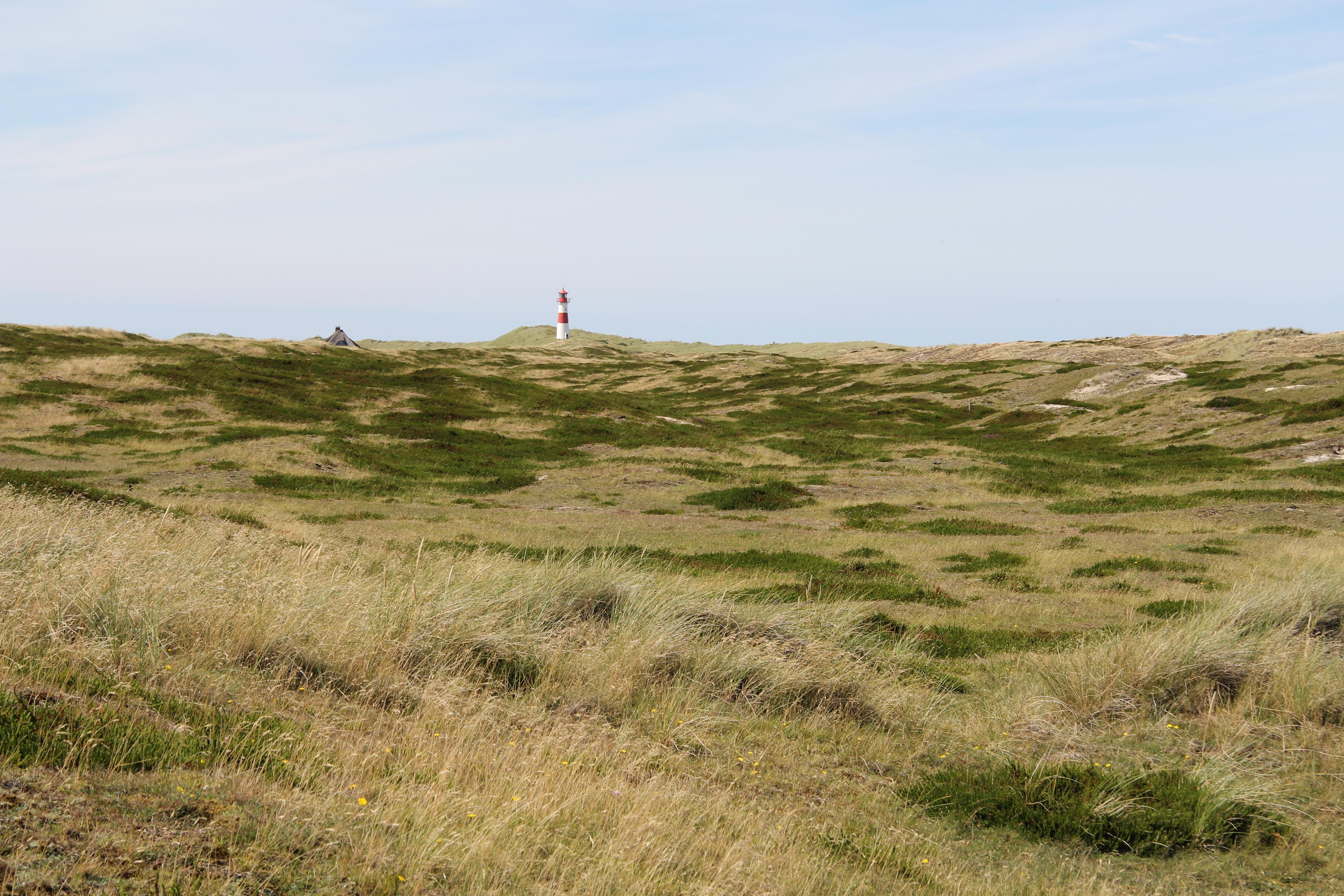weite Landschaften auf Sylt