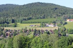 direkt im Bayerischen Wald