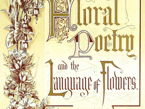 Spring has Sprung: the Language of Flowers