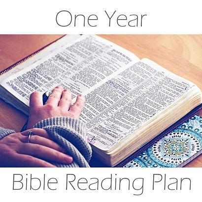one year plan.jpg