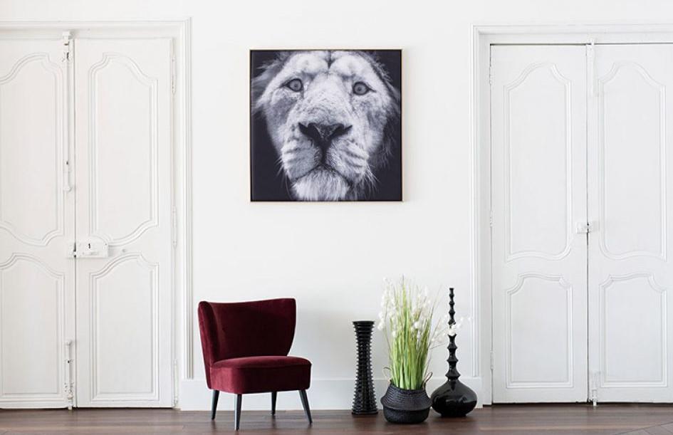 myO Quieto-3D Lion