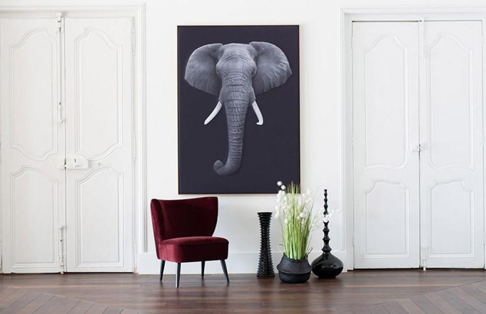 myO Quieto-3D-Elephant
