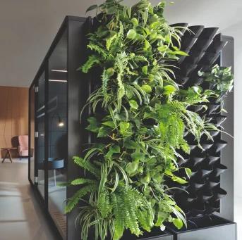 """Höhere Arbeitseffizienz im """"grünen Büro"""" – wie funktioniert es und wie geht das?"""