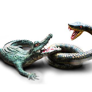snake and crcadile