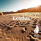 Exodus_icon.jpg