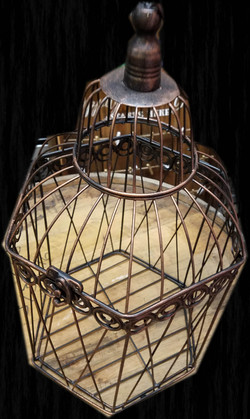 Card Cage