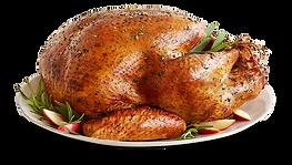 Fresh-Turkey-large-retina.png