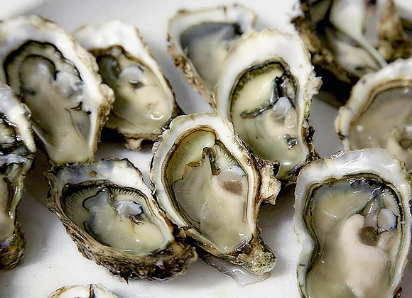 Plateau d'huîtres Fine de Claire - la douzaine