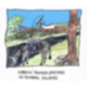 Dibujo - El Explorador sobrevive pescando lengüados en pecebras salvjes