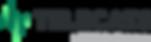Logo-Telecats2017.png
