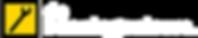 Logo-debaaningenieurs-transparant-websit