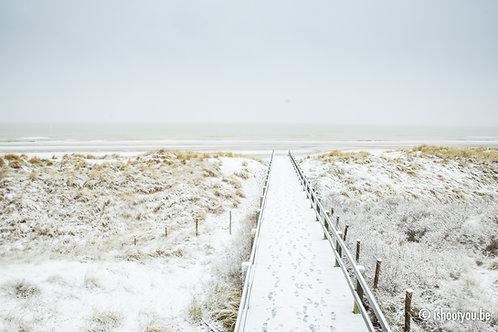 Winter Wonder Strand 2
