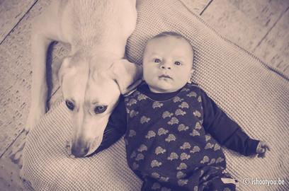 hond en baby portret