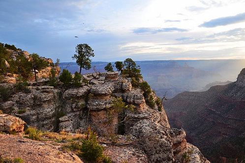 Grand Awakening, Grand Canyon, AZ