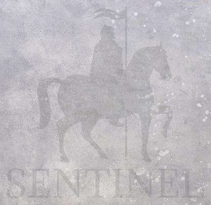 Sentinel%20Hi%20Res%20PNG_edited.jpg