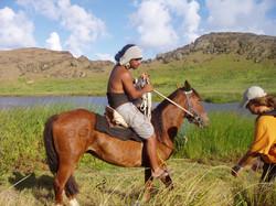 more horse.jpg