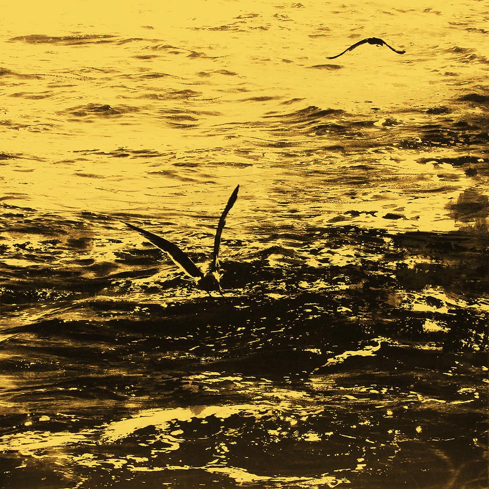 s_11-1)_MæSS_purification_1304_(yellow)_