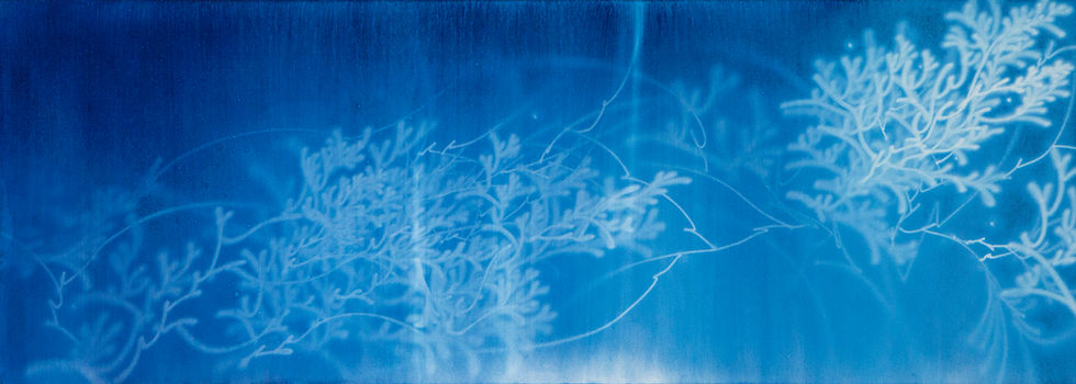 Waterscape_물꽃 1658, 60x170cm, Traditional pigment, water-drawing on mulberry paper, 2013