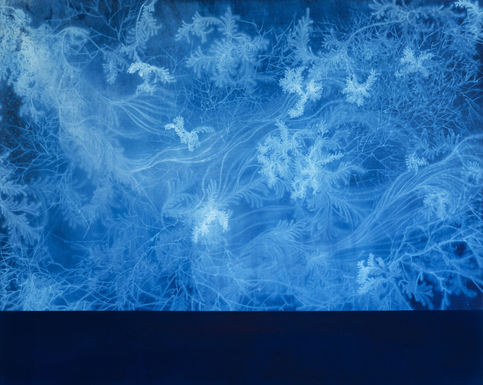 Waterscape_물풀 1509, 130x162cm,  Traditional pigment, water-drawing on mulberry paper, 2013
