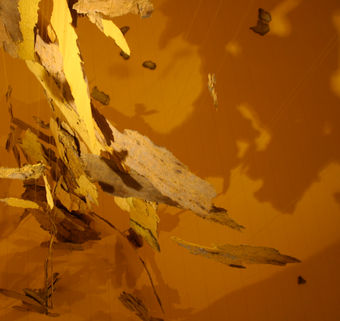 Site-specific Installation_Where we cannot go, 12x12x8 feet, Yellow road paint fragments & fishing lines @ Eric Washburn Gallery in Oregon, USA, 2008