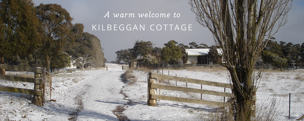 Winte at Kibeggan Cottage