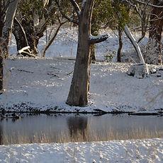 Snow at Kilbeggan Cottage, Oberon