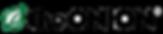 theonion logo.png