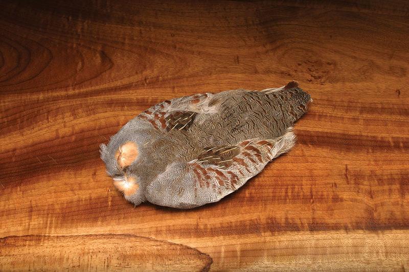 Premium Hungarian Partridge Skin