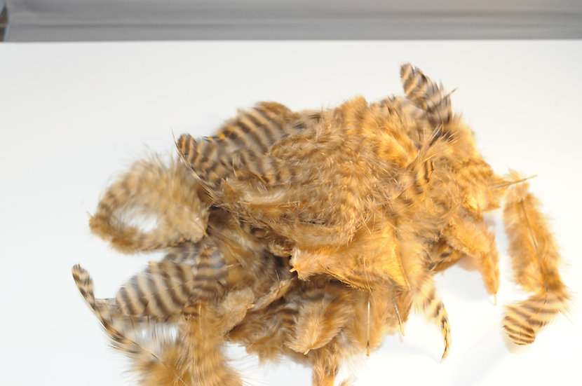 Grizzly Soft Hackle