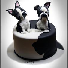 Black and white doggies