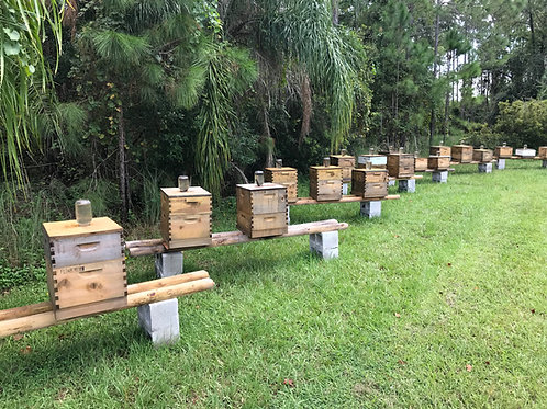 Bee keeping management services.