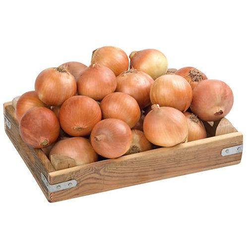 Onion 500gr