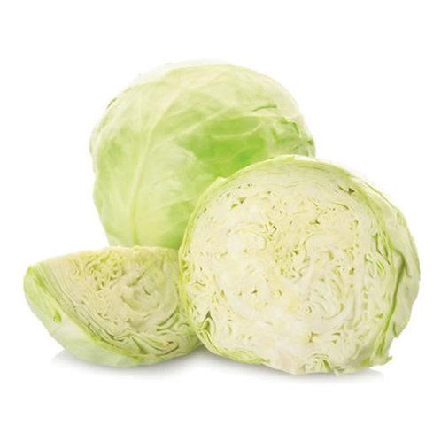 White Cabbage 1 Pcs