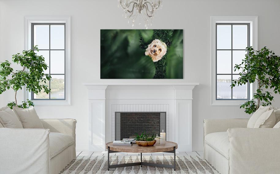 Fireplace Large
